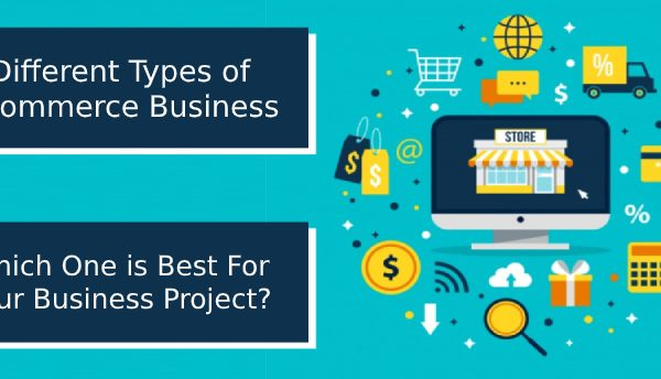 What are the Different Types of eCommerce And Which One is Best for Your Business Project?